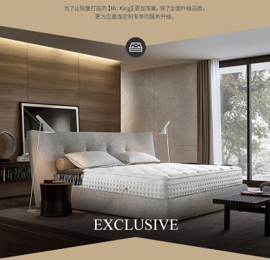 雅兰至尊弹簧系列【名仕尊享版】开启先生卧室生活