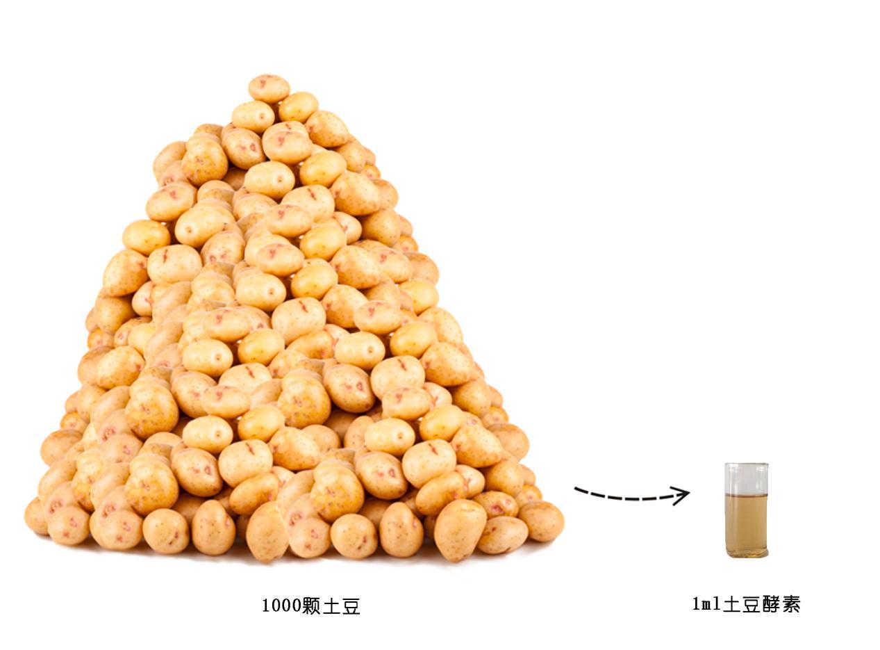 薯于pototaly土豆酵素医用面膜--敏感肌的福音