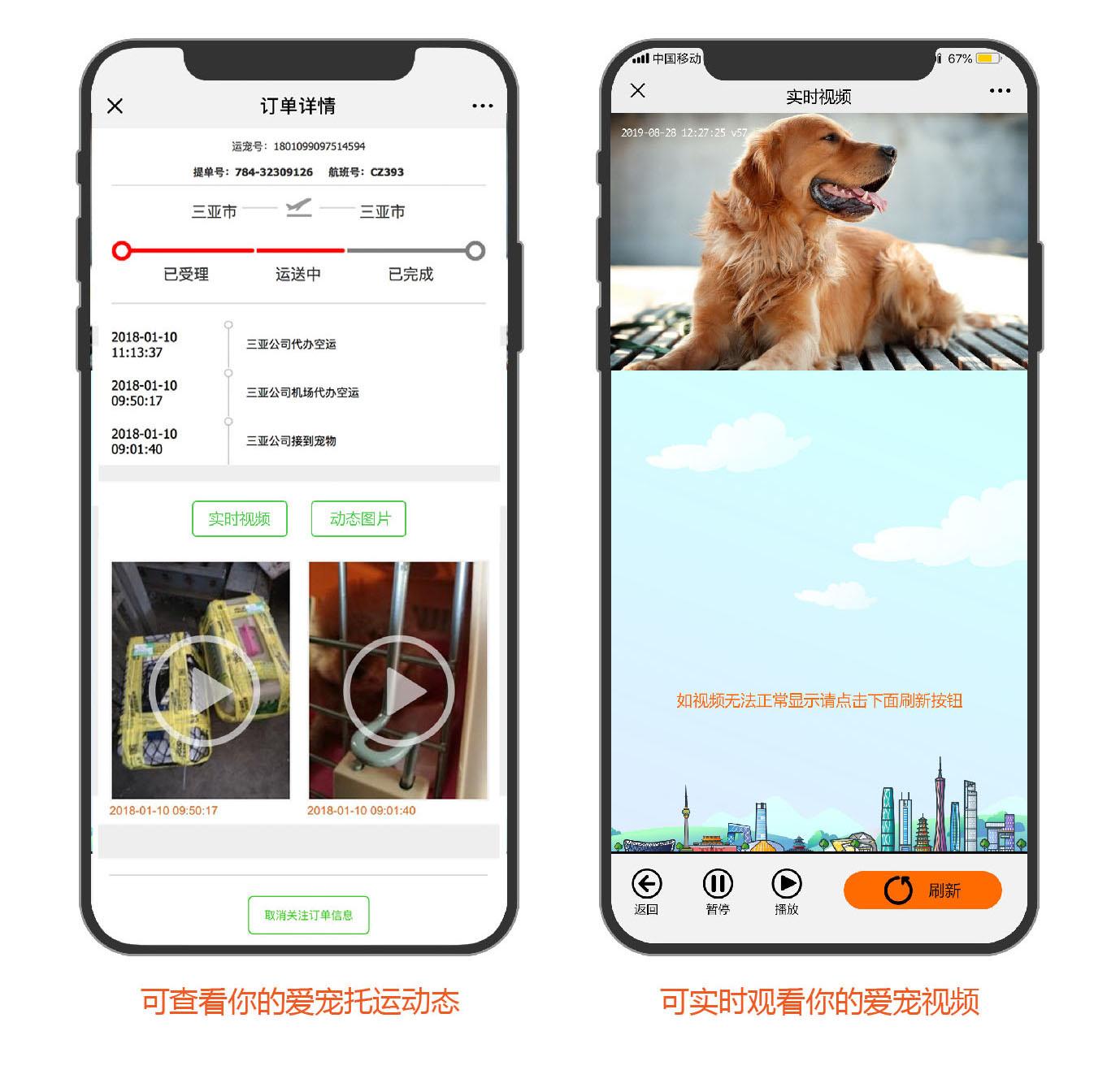 业内首创:友鑫为宠主提供实时视频服务