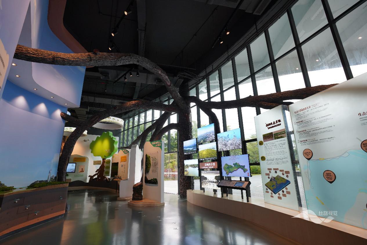 世界博物馆日,丝路视觉出品红树林科普馆唤醒湿地保育意识
